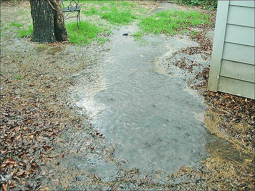 Standing Water Backyard Flooding