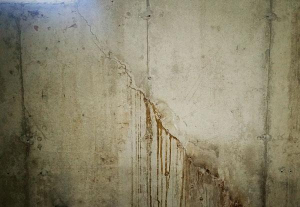 Cracked foundation wet basement flooded yard