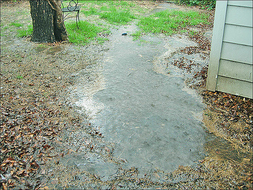Backyard Flooding and Standing Water Repair Services ...